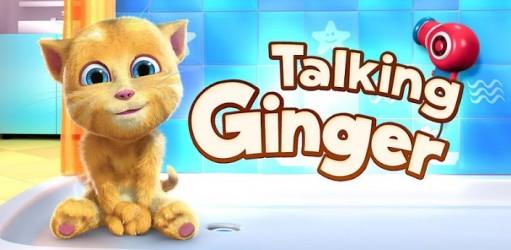 application ginger