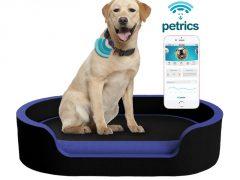 Petrics : Surveillez la santé et l'alimentation de votre chien depuis votre smartphone
