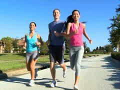 Muster : une activité sportive et plus si affinité